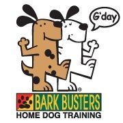 30 best dog of the week images facebook dog your dog dog training pinterest