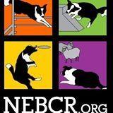 New England Border Collie Rescue, Inc.