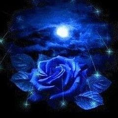 BlueRose_Design