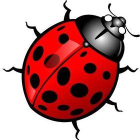 Ladybug Strategies, LLC