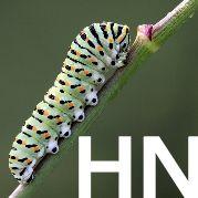 HabitatNetwork