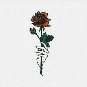 sugared rose