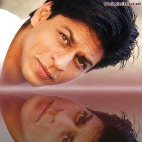 Fan SRK WWE And Kpop