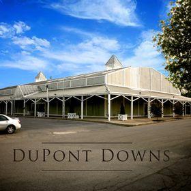 Dupont Downs