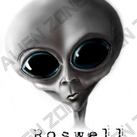 The Alien Zone in Roswell, NM