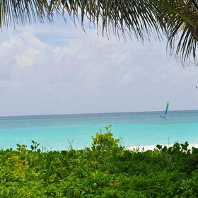 ASK Barbados Holiday Rentals