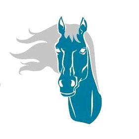 Confident HorseRider