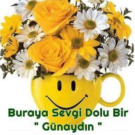 Nurcan Telli
