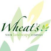 Wheat's Landscape