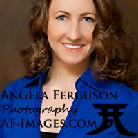Angela Ferguson Photography