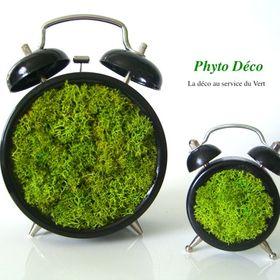 Phyto Déco