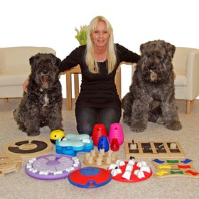 Nina Ottosson Dog Treat Puzzle