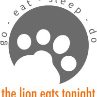 The lion eats tonight