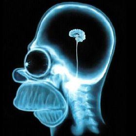 Neuro-Aestheticist