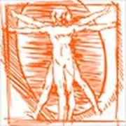 Bihor Colegiul Medicilor