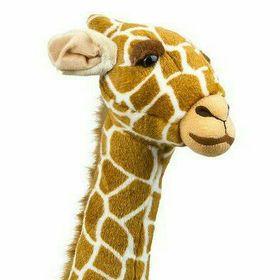 Nadinchen Giraffinchen