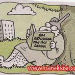 Altan Doğan