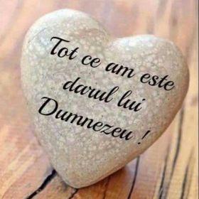 Dana Domnariu