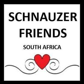 Schnauzer Friends South Africa