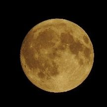 . Moonlover