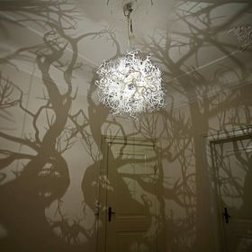 Forms in Nature - Shadow chandelier