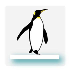 Floating Penguin