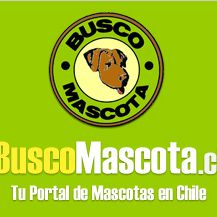BuscoMascota.cl