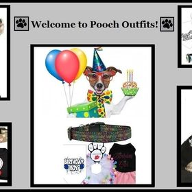 Pooch Outfits