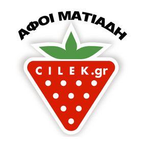 CILEK.GR
