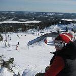 Heli Pitkänen