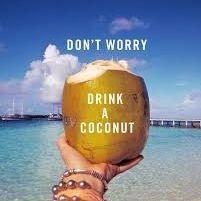 Happy Coconuts Travel Blog