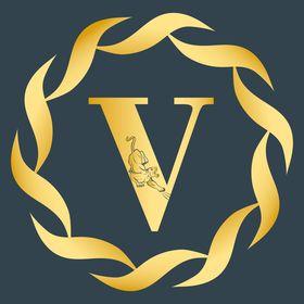 VECTOR X STUDIO