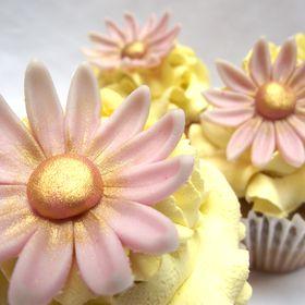 Anna Cake e Arte