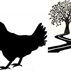 SL Chickens