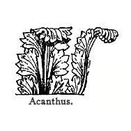 Acanthus Hardware & Studio, llc