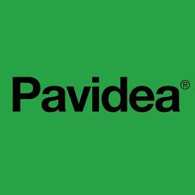 Pavidea