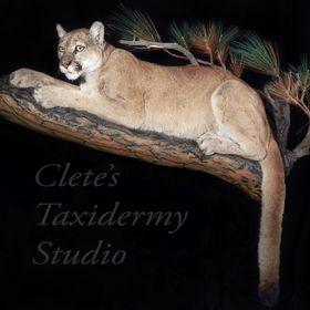 Clete's Taxidermy Studio