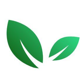 The Green Loot | Vegan Food, Health and Weight Loss Blog