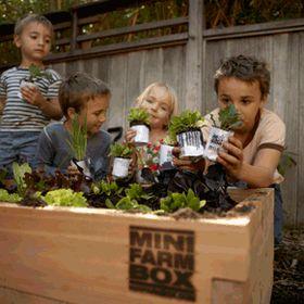 MiniFarmBox LLC