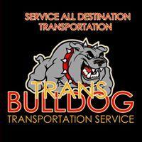 Bulldog Trans