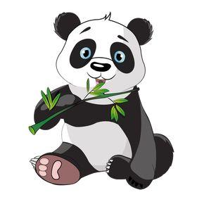 Mucit Panda