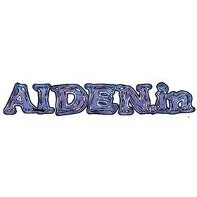 Aiden .in