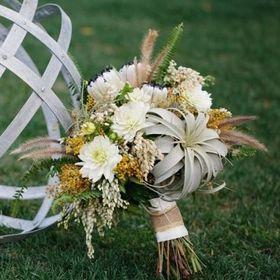 Foxtail Florals