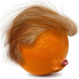 Dishing Trump