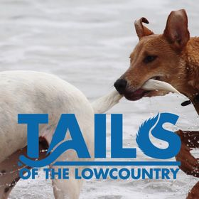 Tails of the Lowcountry
