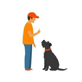dogtraining tips4uk