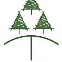 Bosque Taller Taller