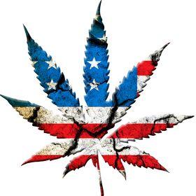 67d8aea8dd5 legalize marijuana (lmarijuana) on Pinterest