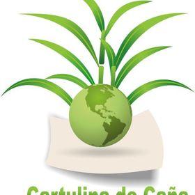 Empaques Para Alimentos Ecológicos