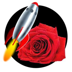 Rocket Rose Art